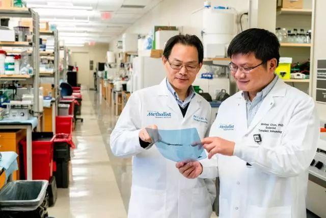 《细胞》子刊:里程碑!华人科学家终于找到免疫细胞功能「开关」,器官移植或将告别无尽的免疫抑制剂 | 科学大发现