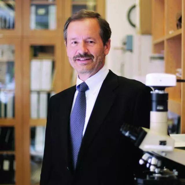 《自然》:狡猾至极!为了转移,癌细胞竟然会伪装成免疫细胞,难怪T细胞会让它在眼皮子底下溜走 | 科学大发现